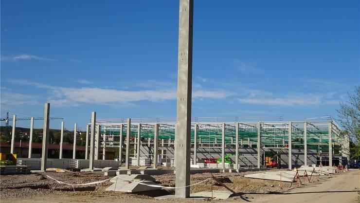 Die Balteschwiler AG baut auf ehemaligem Kera-Gelände ein Logistikzentrum. sho