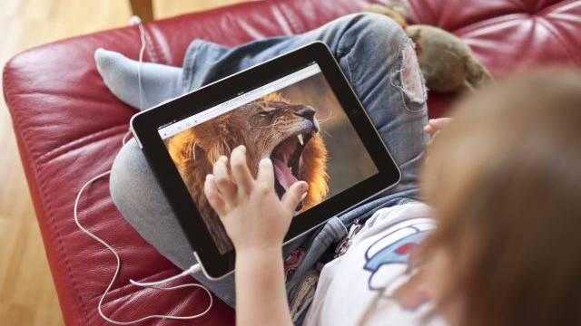 Dieser Löwe ist ungefährlich. Doch im Internet lauern auch echte Gefahren. Foto: Keystone