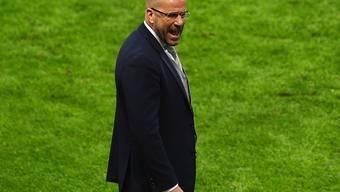 Peter Bosz soll in Dortmund als Trainer übernehmen
