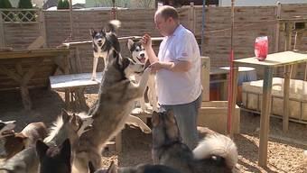Happy End für die Familie Krause aus Obergerlafingen. Sie ziehen auf ein grösseres Grundstück in den Kanton Bern und dürfen ihre 14 Hunde somit behalten.