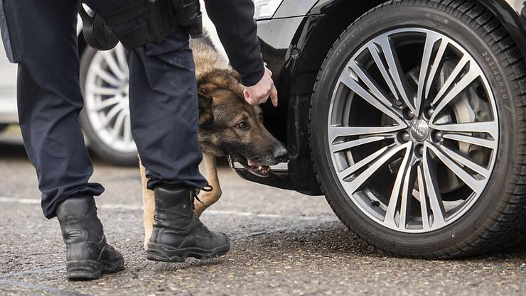"""Sprengstoffspürhund """"Arkan vom Haus Iten"""" der Zürcher Kantonspolizei überprüft den Auto-Konvoi, der den brasilianischen Präsidenten Jair Bolsonaro nach Davos ans WEF bringen soll."""