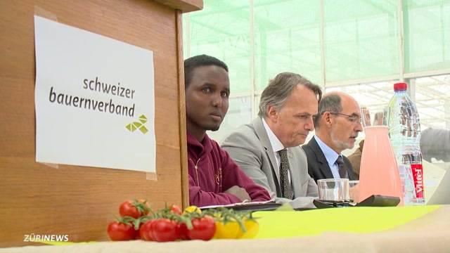 Flüchtlinge sollen Bauern unterstützen