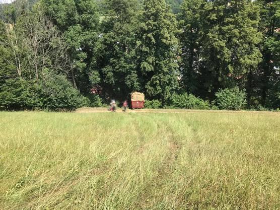 Der 31-Jährige geriet unter den Traktor und zog sich tödliche Verletzungen zu.