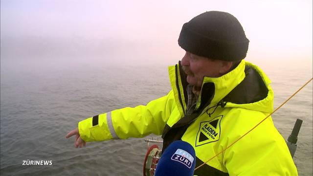 Forellenflaute wegen zu sauberem Zürichsee