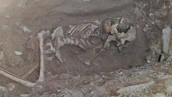 «Vampir-Kind»: Bilder von den Ausgrabungen im Lugnano.