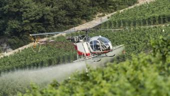 """Der Einsatz synthetischer Pestizide in der Landwirtschaft soll verboten werden. Das fordert die Gruppe""""future3.0"""", die hinter der Initiative """"Für eine Schweiz ohne synthetische Pestizide"""" steht. (Archivbild)"""