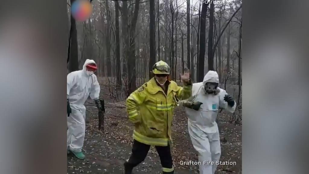 Australischer Feuerwehrmann tanzt durchs Netz