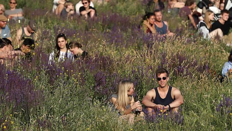 Festivalbesucher im Berliner Mauerpark. Ein neues Angebot für Touristen in der deutschen Hauptstadt sieht vor, dass Gäste dort putzen, wo andere feiern. (Archivbild)