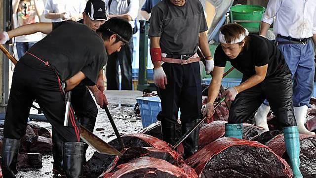 Verzehr von Walfleisch nahm in Japan in den 90er Jahren ab (Archiv)
