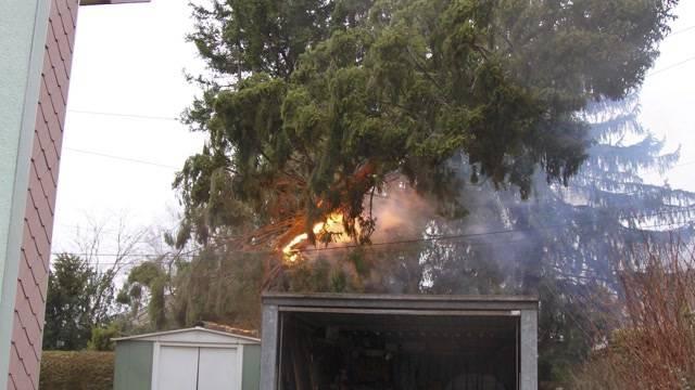Brennender Baum unterbricht Bahnstrecke