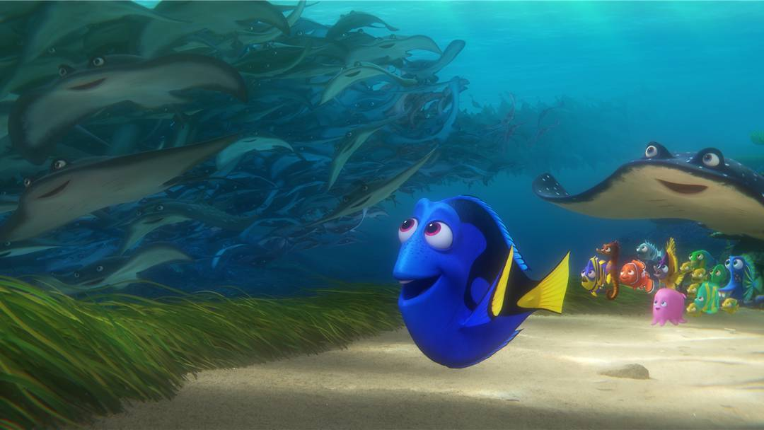 Finding Dory Trailer Official | Disney 2016