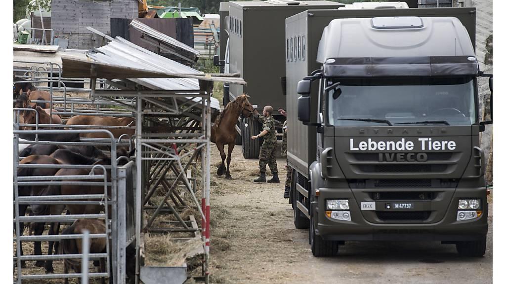 Beim Grosseinsatz auf dem Hof des fehlbaren Pferdehalters in Hefenhofen TG wurden Mitte 2017 rund 250 Tiere beschlagnahmt. Nun hat die Thurgauer Regierung ein neues Veterinärgesetz verabschiedet, das den Tierschutz verbessern soll (Archivbild).