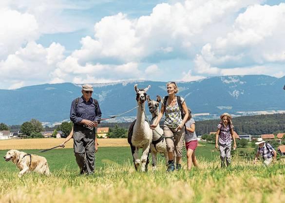 Auch die Zürcher Kantonsrätin Sonja Gehrig hatte sichtlich Spass, mit den Lamas zu wandern. Von der Flur Seel in Full-Reuenthal geht der Blick auf das nahe AKW Leibstadt.