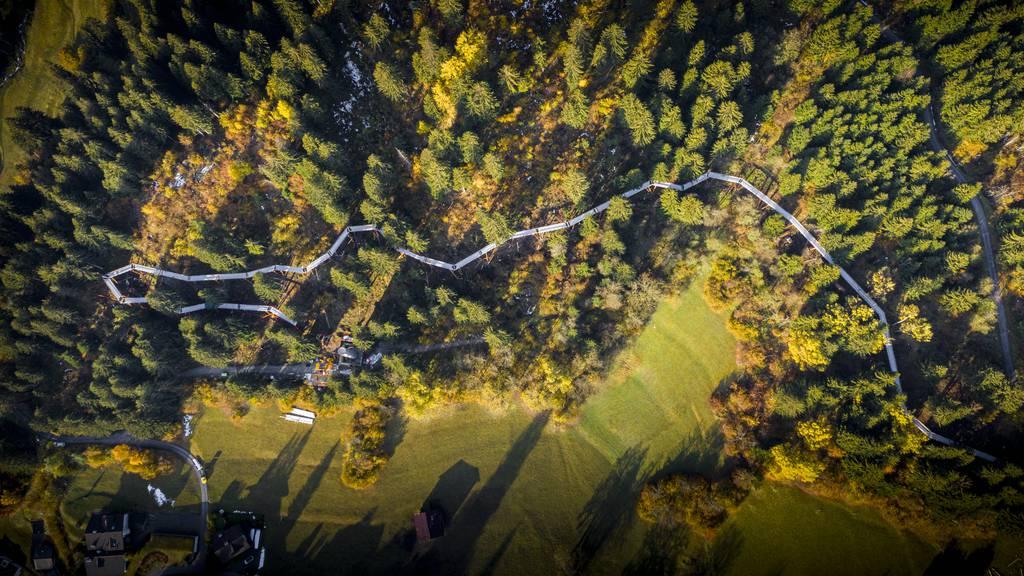 In Graubünden eröffnet der längste Baumwipfelpfad der Welt