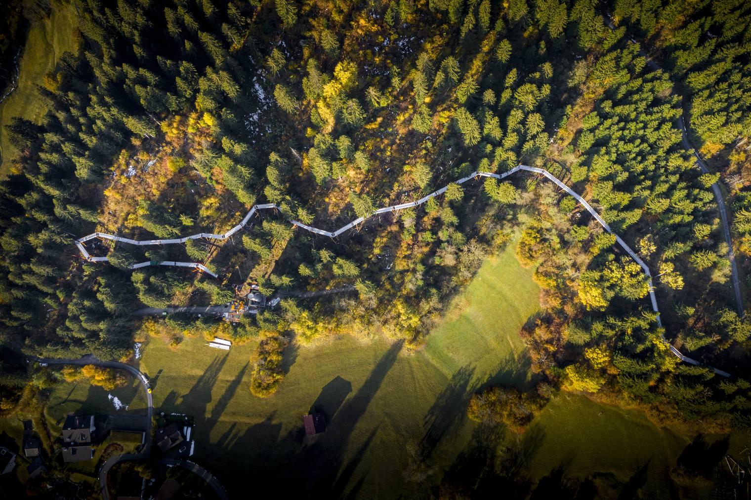 In Laax eröffnet der längste Baumwipfelpfad der Welt
