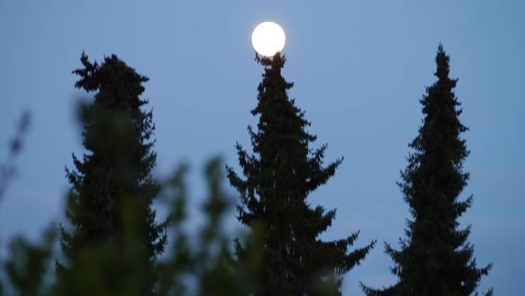 Der Mond macht kurze Ruhepause.
