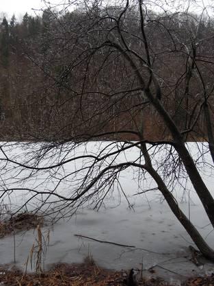 Am Egelsee herrscht ein Wetter, da würde man keinen Hund nach draussen jagen
