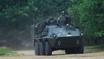 Panzer vom Typ Pandur der belgischen Armee.