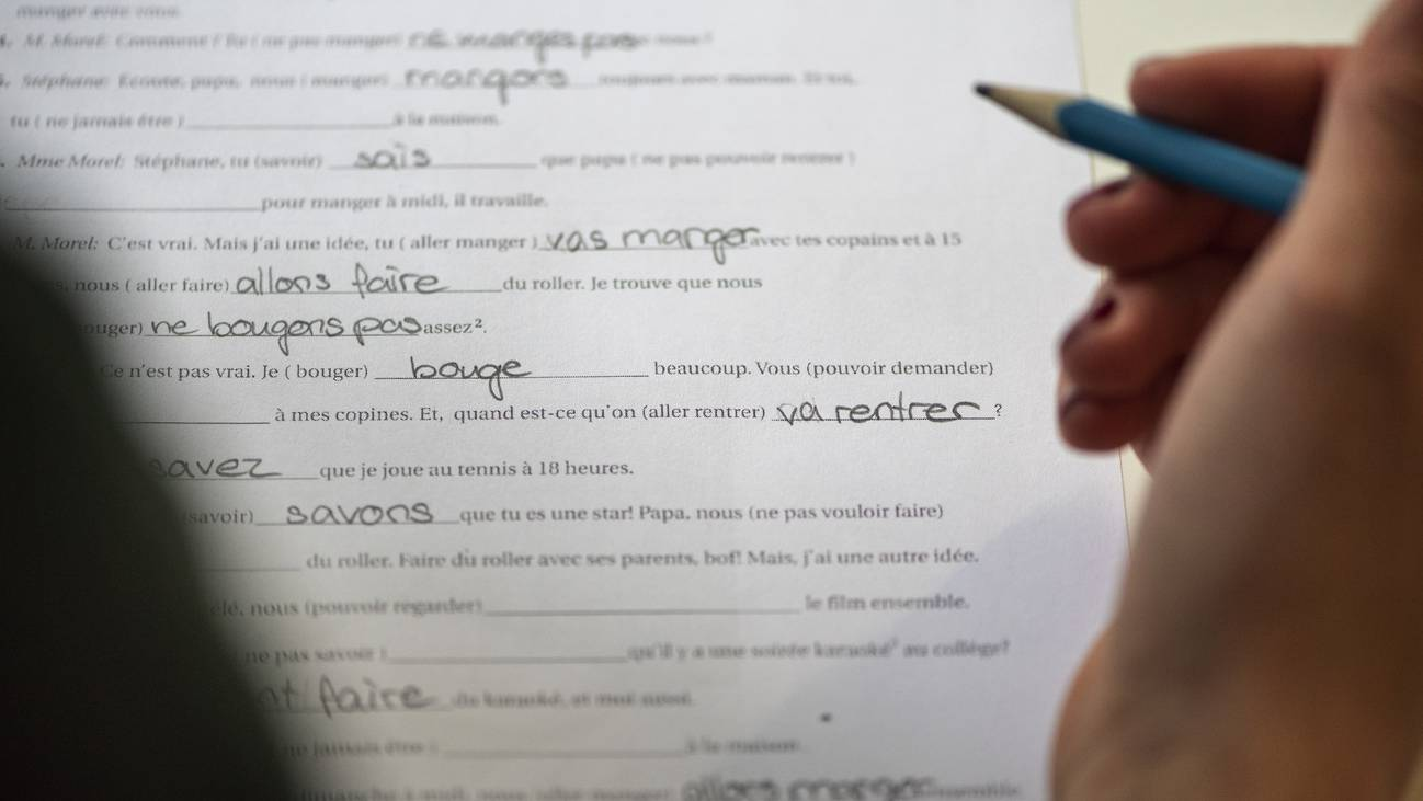 Französisch Kenntnisse