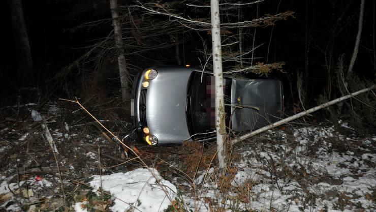 Eine Autofahrerin verlor in einer Kurve die Kontrolle über ihr Fahrzeug.