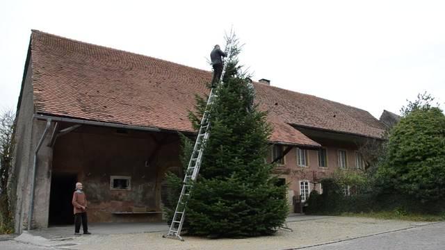 Weihnachtsbaumschmücken in Linn