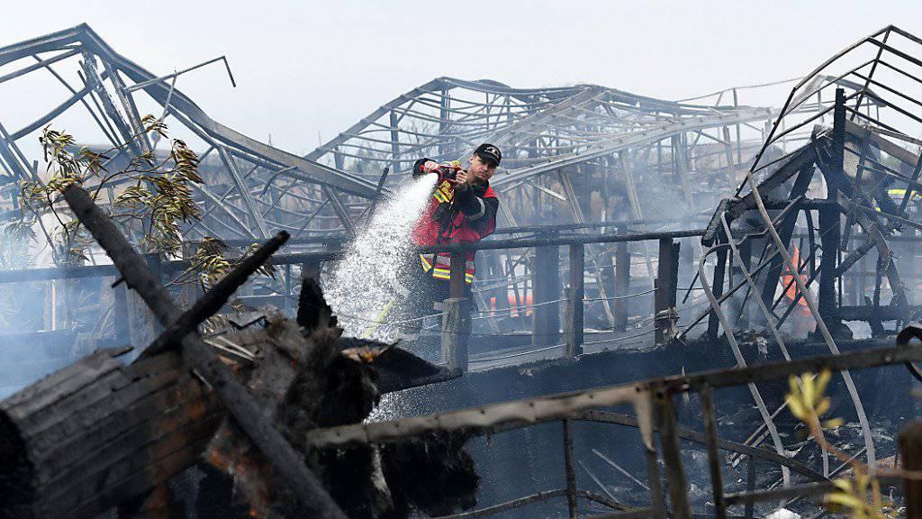 In Österreich sind am Neusiedler See mehrere Schiffe ausgebrannt.