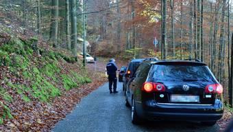 Sonntags gilt ein Fahrverbot. Und dennoch wurde die Passstrasse auf den Weissenstein am 1. November rege frequentiert.