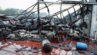 Die Katastrophe von Schweizerhalle