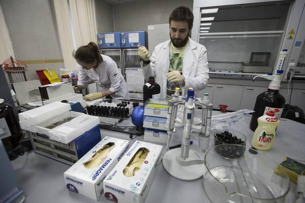 Das russische Doping-Aufspür-Labor in Moskau. (Bild Mai 2016)