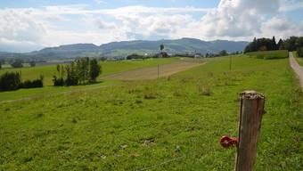 In Dietwil soll in dieser Geländemulde eine Deponie für unverschmutztes Aushubmaterial realisiert werden. ES