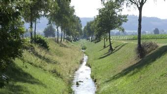 Der Limpachkanal muss im Oberlauf saniert werden.