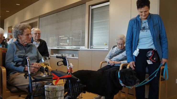 Annette Heuberger wird von der freiwilligen zur angestellten Betreuerin. Ob Hund Enzo die Änderung auffällt?