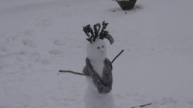 Der erste Schnee im Flachland