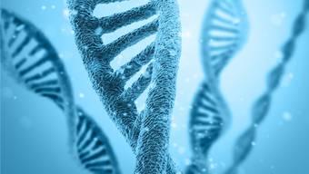 Fehler in der Bau- oder Gebrauchsanleitung einer Zelle direkt reparieren: Der grosse Traum der Gentherapie.