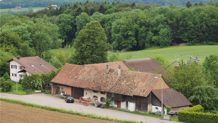 Auf diesem Bauernhof in Boningen fanden Polizei und Veterinärdienst des Kantons Solothurn 15 tote Rinder.