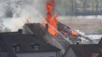 Der Grossbrand im Klingnauer Rebstock vom 24. April 2010