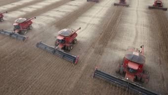 Sojabohnen-Ernte im brasilianischen Bundesstaat Mato Grosso. Genmanipulierte Sojabohnen der Bayer-Tochter Monsanto dürfen weiterhin in der EU verkauft werden. Sie werden vor allem in Südamerika angebaut. (Archivbild)