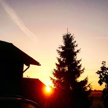 Sonnenaufgang in Horriwil auf unserem Landwirtschaftlichen Betrieb
