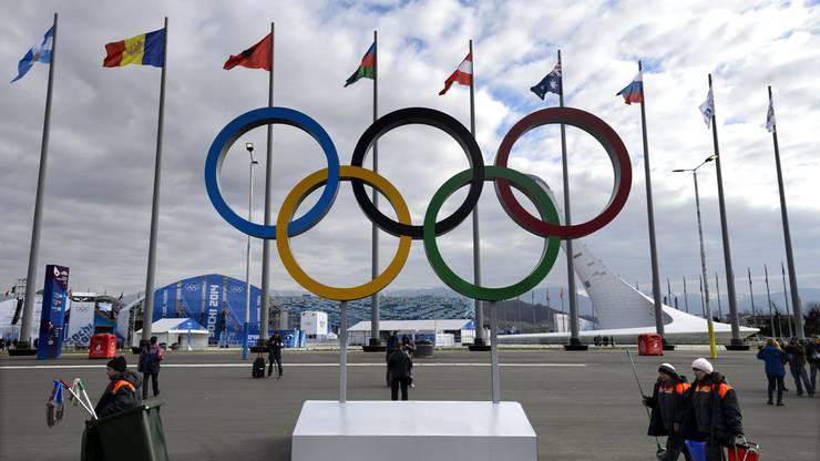 Die olympischen Winterspiele finden dieses Jahr in Pyeongchang statt
