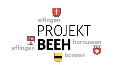 Die acht Arbeitsgruppen zum Projetk BEEH werden sich insgesamt sieben Mal treffen – bis Ende Jahr wird der Schlussbericht verfasst.