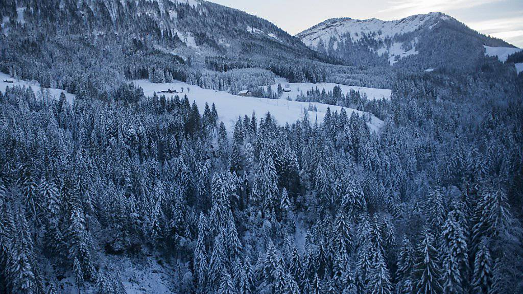 Blick auf den verschneiten Kronberg im appenzellischen Jakobsbad, auf dem die Frau auf einem Schneefeld verunfallte. (Archiv)