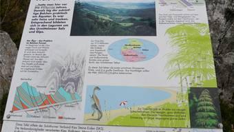 Zweimal sind die Wörter «Millionen» (oben links und in der Mitte) auf der Tafel «Durchblicke in die Urzeit» zerkratzt.