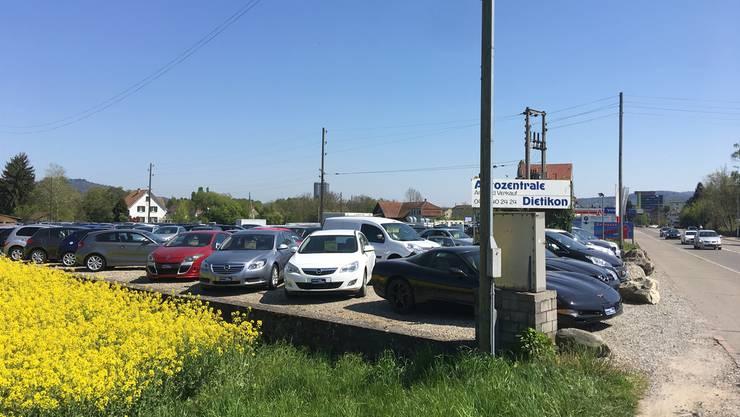 Schön anzusehen ist nur das üppig blühende Rapsfeld daneben: Einer der Auto-Occasionshändler auf dem Niderfeld.