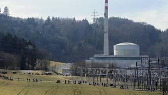Demonstranten vor dem AKW Mühleberg im März 2012 (Archiv)