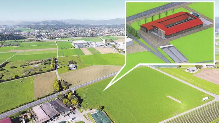 Die bestehende Anlage (links unten) fasst 800 Schweine. Nördlich davon soll jetzt ein Neubau mit Platz für zusätzliche 700 Schweine realisiert werden. Im neuen, U-förmigen Stall (kleines Bild) bekommen die Tiere im Innenhof Auslauf.