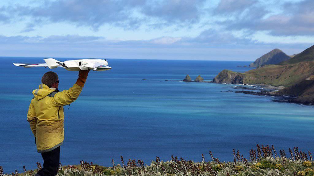 Drohnen als Helfer der Ornithologie: Ökologe Jarrod Hodgson bereitet den Start einer Drohne vor, um Vogelbestände auf Macquarie Island in Australien zu zählen.