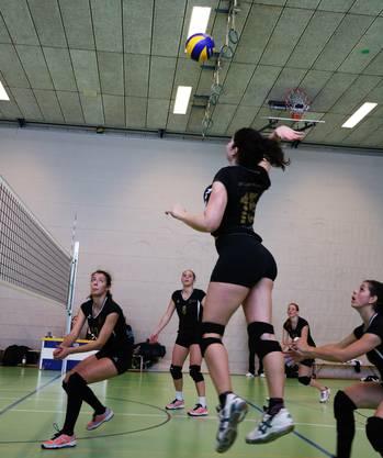 Damen 1 in Action
