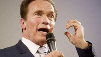 Arnold Schwarzenegger mit neuer Aufgabe (Archiv)