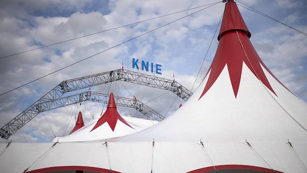 Der Circus Knie und die Online-Plattform Viagogo stehen wegen Ticketverkäufen im Streit. Das Handelsgericht St. Gallen muss eine Klage beurteilen (Archivbild).