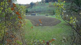 «Bleihaltig»: Der Bereich des ehemaligen Kugelfanges – im Hintergrund das Schützenhaus. (Bild: Walter Schwager)